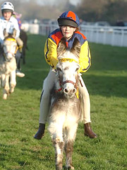 Donkey Derbies from Dunton Stables