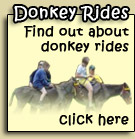 Click here to find out about donkey rides