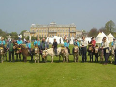 Donkey Rides offered by Dunton Stables