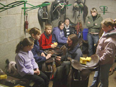 Pony & stables management courses