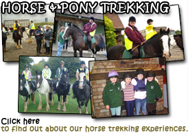 Read about horse & pony trekking